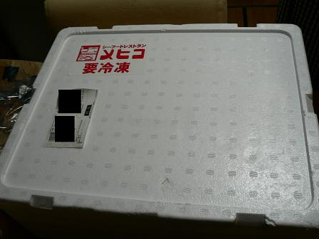 P1000736i.JPG